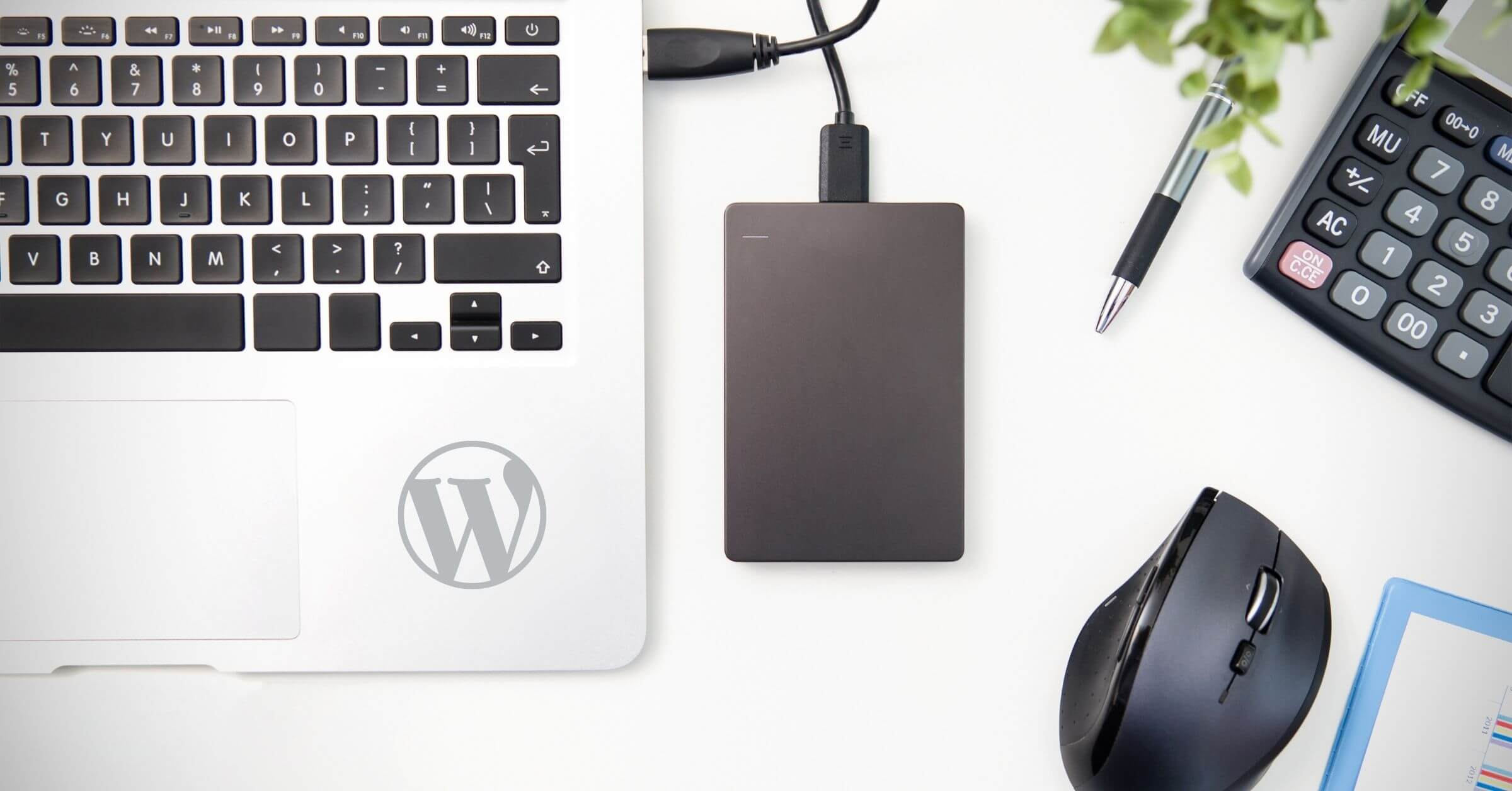 backups wordpress